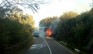 BusFiamme